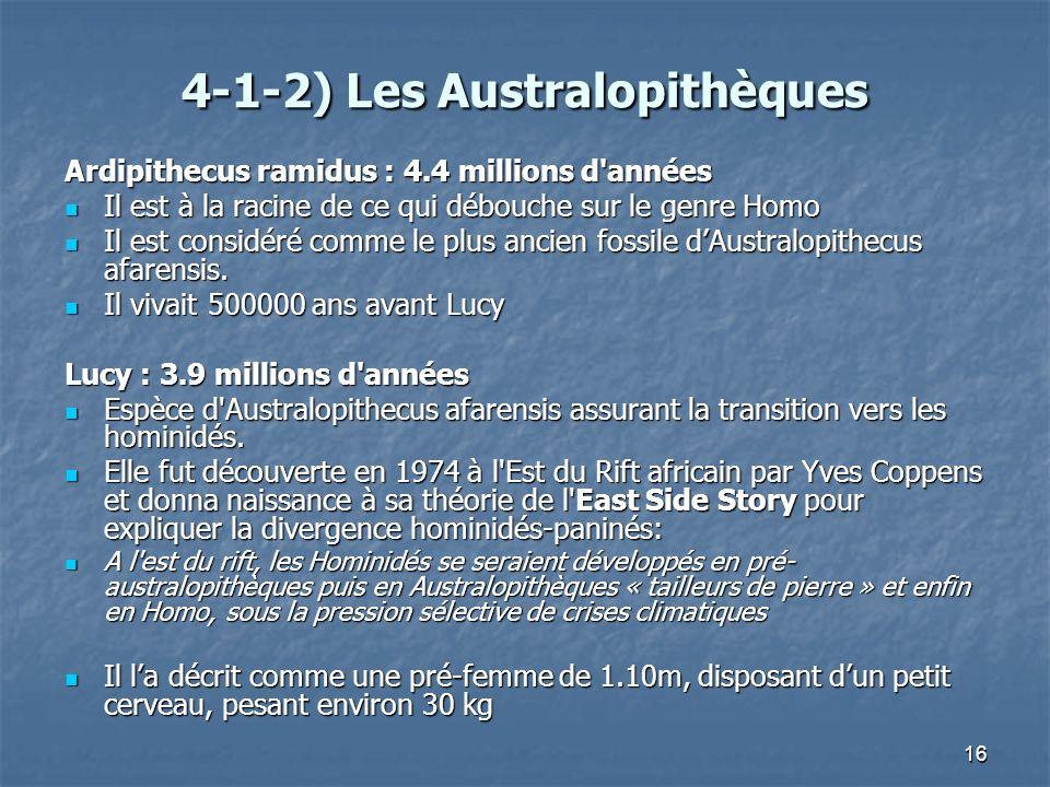 16 4-1-2) Les Australopithèques Ardipithecus ramidus : 4.4 millions d'années Il est à la racine de ce qui débouche sur le genre Homo Il est à la racin