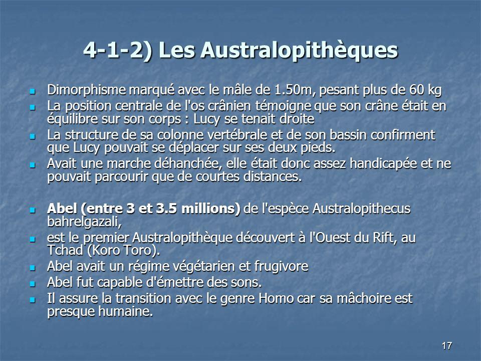 17 4-1-2) Les Australopithèques Dimorphisme marqué avec le mâle de 1.50m, pesant plus de 60 kg Dimorphisme marqué avec le mâle de 1.50m, pesant plus d