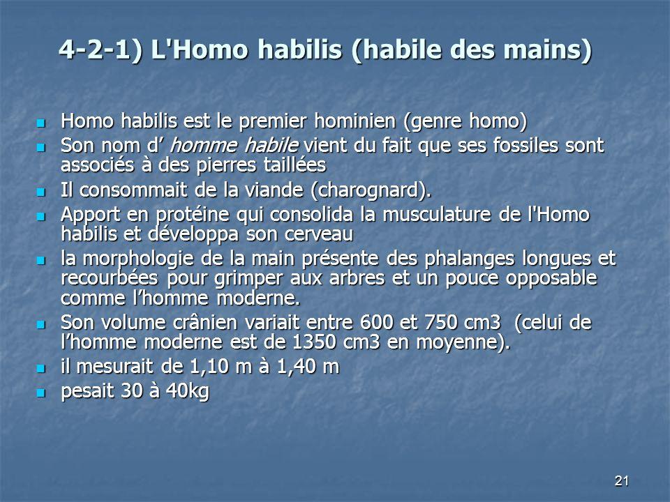 21 4-2-1) L'Homo habilis (habile des mains) Homo habilis est le premier hominien (genre homo) Homo habilis est le premier hominien (genre homo) Son no