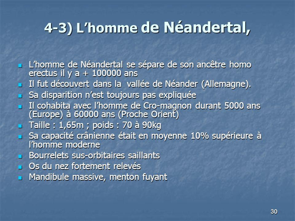 30 4-3) Lhomme de Néandertal, Lhomme de Néandertal se sépare de son ancêtre homo erectus il y a + 100000 ans Lhomme de Néandertal se sépare de son anc