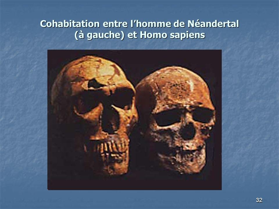 32 Cohabitation entre lhomme de Néandertal (à gauche) et Homo sapiens