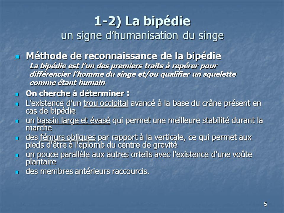 5 1-2) La bipédie un signe dhumanisation du singe Méthode de reconnaissance de la bipédie Méthode de reconnaissance de la bipédie La bipédie est lun d