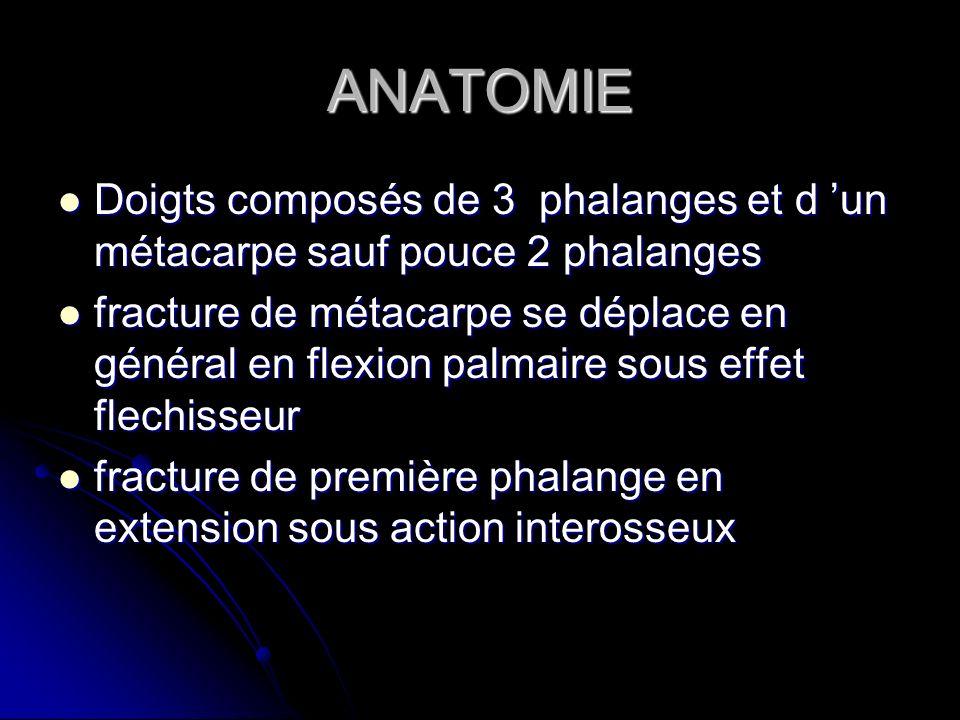 ANATOMIE Doigts composés de 3 phalanges et d un métacarpe sauf pouce 2 phalanges Doigts composés de 3 phalanges et d un métacarpe sauf pouce 2 phalang