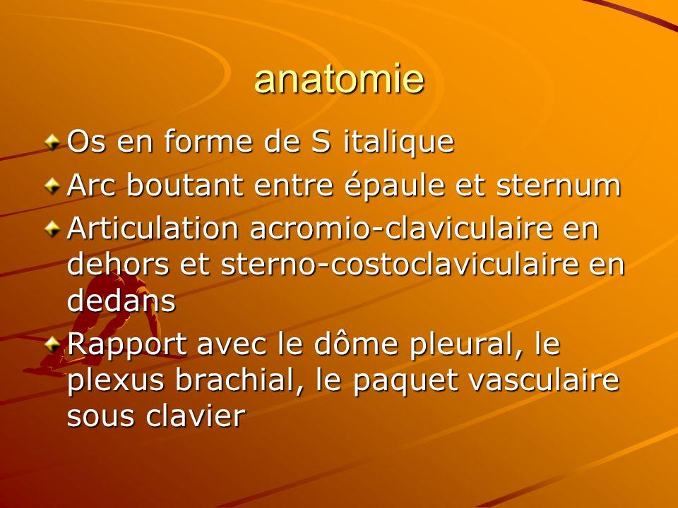 anatomie Os en forme de S italique Arc boutant entre épaule et sternum Articulation acromio-claviculaire en dehors et sterno-costoclaviculaire en deda