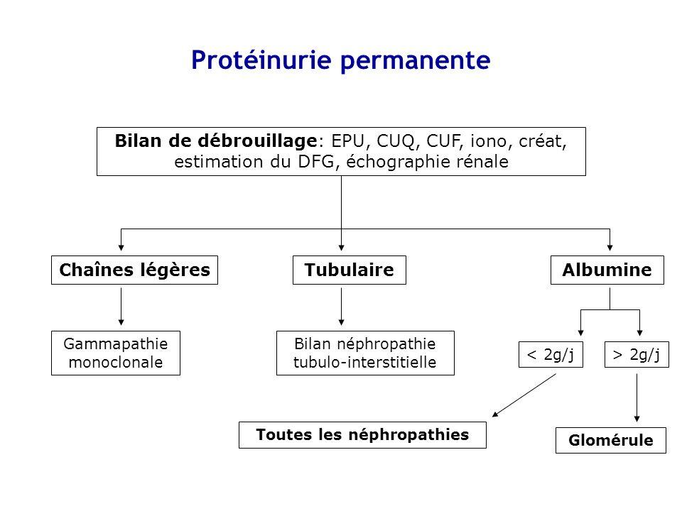 Traitement de la protéinurie Étiologique Chaque fois que possible Symptomatique Souhaitable car toute PU permanente entraîne une fibrose interstitielle Produits néphroprotecteurs : IEC - ARA2