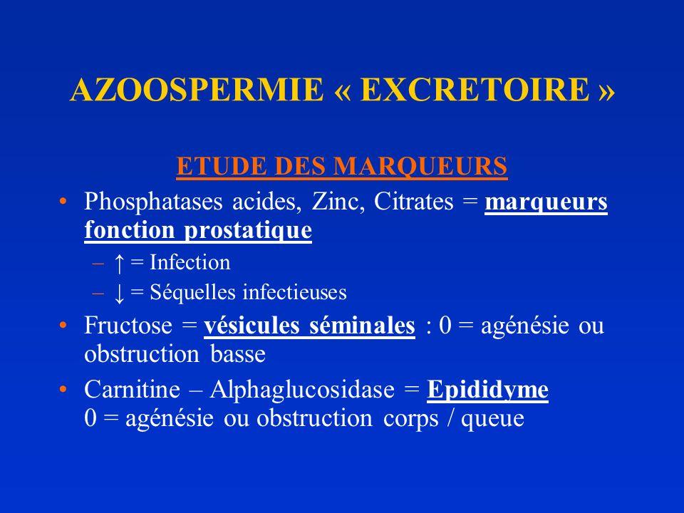 DEUXIEME CONSULTATION : SPERMOGRAMME ANORMAL AZOOSPERMIE FSH NORMALE: AZ. EXCRETOIRE 6% =>EXPLORATION TEST. CHIR. (Urologue) FSH BASSE : HYPOGONADISME