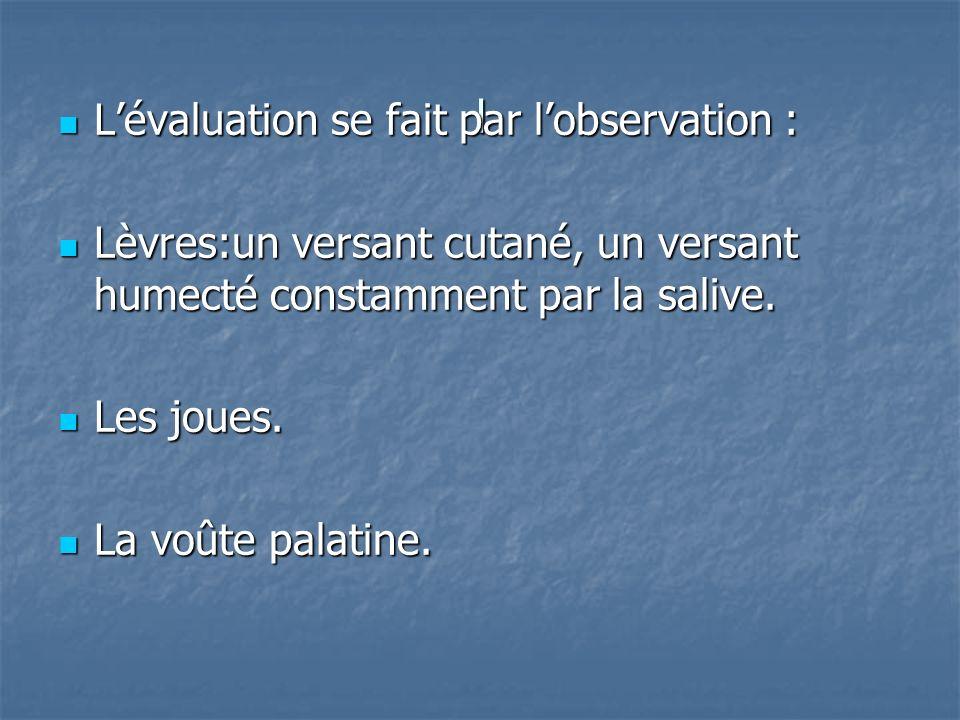 l Lévaluation se fait par lobservation : Lévaluation se fait par lobservation : Lèvres:un versant cutané, un versant humecté constamment par la salive.