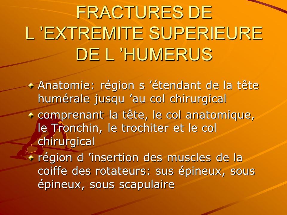 Anatomie: région s étendant de la tête humérale jusqu au col chirurgical comprenant la tête, le col anatomique, le Tronchin, le trochiter et le col ch