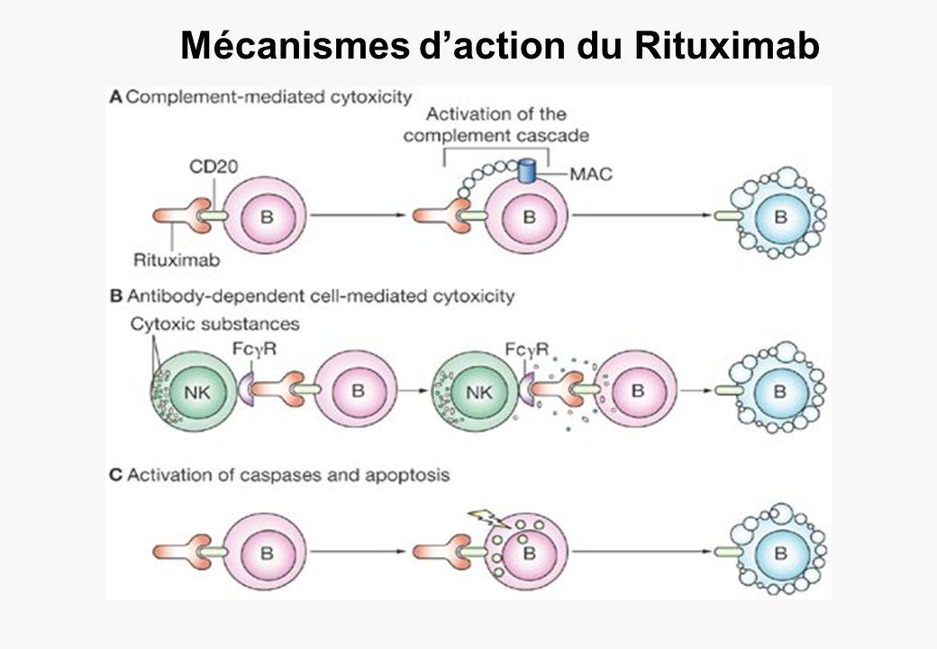 Mécanismes daction du Rituximab
