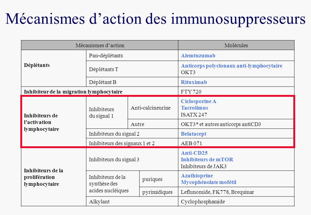 Mécanismes dactionMolécules Déplétants Pan-déplétantsAlemtuzumab Déplétants T Anticorps polyclonaux anti-lymphocytaire OKT3 Déplétant BRituximab Inhib