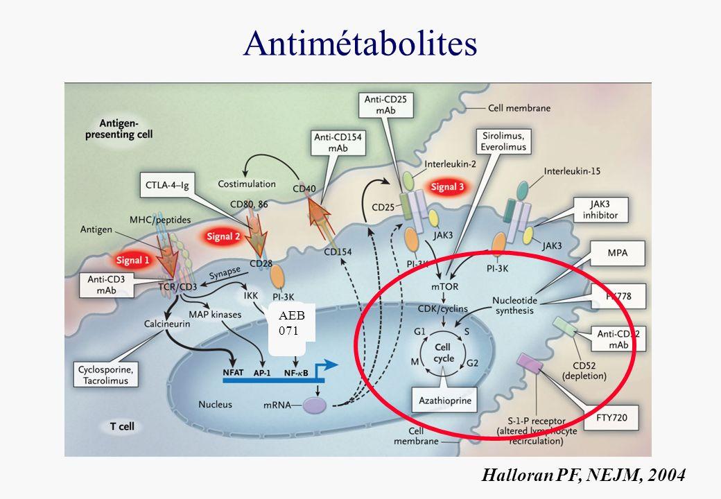 Antimétabolites Halloran PF, NEJM, 2004 AEB 071