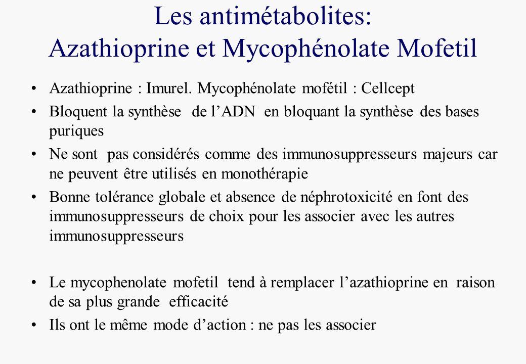 Les antimétabolites: Azathioprine et Mycophénolate Mofetil Azathioprine : Imurel. Mycophénolate mofétil : Cellcept Bloquent la synthèse de lADN en blo