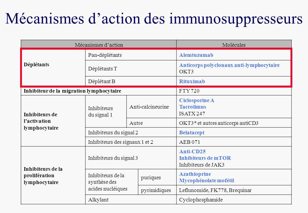 Mécanismes dactionMolécules Déplétants Pan-déplétantsAlemtuzumab Déplétants T Anticorps polyclonaux anti-lymphocytaire OKT3 Déplétant BRituximab Inhibiteur de la migration lymphocytaireFTY 720 Inhibiteurs de lactivation lymphocytaire Inhibiteurs du signal 1 Anti-calcineurine Ciclosporine A Tacrolimus ISATX 247 AutreOKT3* et autres anticorps antiCD3 Inhibiteurs du signal 2Belatacept Inhibiteurs des signaux 1 et 2AEB 071 Inhibiteurs de la prolifération lymphocytaire Inhibiteurs du signal 3 Anti-CD25 Inhibiteurs de mTOR Inhibiteurs de JAK3 Inhibiteurs de la synthèse des acides nucléiques puriques Azathioprine Mycophénolate mofétil pyrimidiquesLeflunomide, FK778, Brequinar AlkylantCyclophosphamide Mécanismes daction des immunosuppresseurs