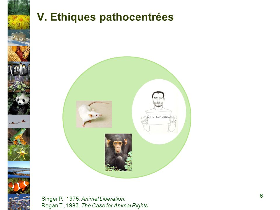 V.Ethiques pathocentrées ÊTRE SENSIBLE Singer P., 1975.
