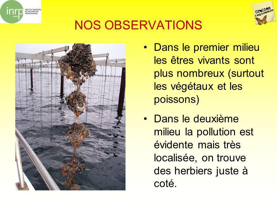 NOS OBSERVATIONS Dans le premier milieu les êtres vivants sont plus nombreux (surtout les végétaux et les poissons) Dans le deuxième milieu la polluti