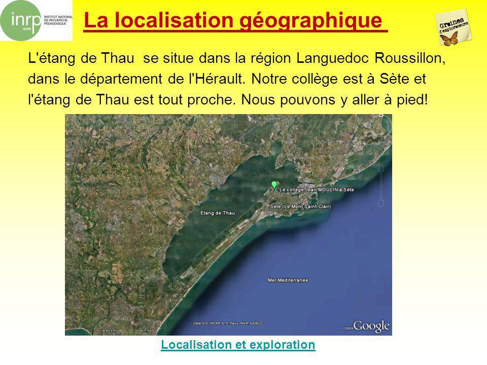 La localisation géographique L'étang de Thau se situe dans la région Languedoc Roussillon, dans le département de l'Hérault. Notre collège est à Sète