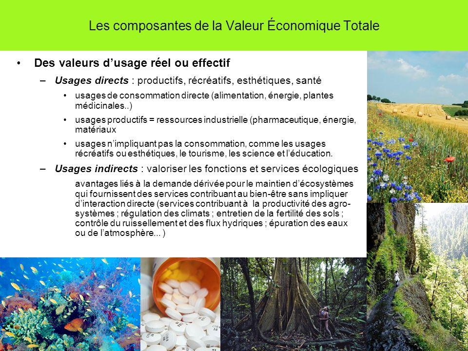 Les composantes de la Valeur Économique Totale Des valeurs dusage réel ou effectif –Usages directs : productifs, récréatifs, esthétiques, santé usages