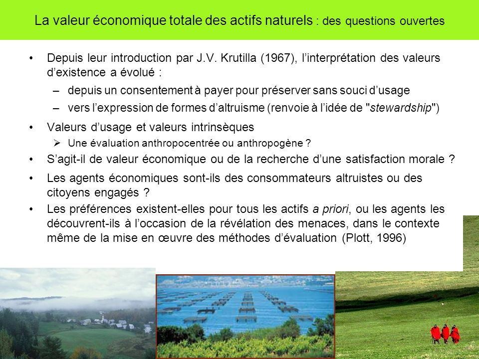 La valeur économique totale des actifs naturels : des questions ouvertes Depuis leur introduction par J.V. Krutilla (1967), linterprétation des valeur