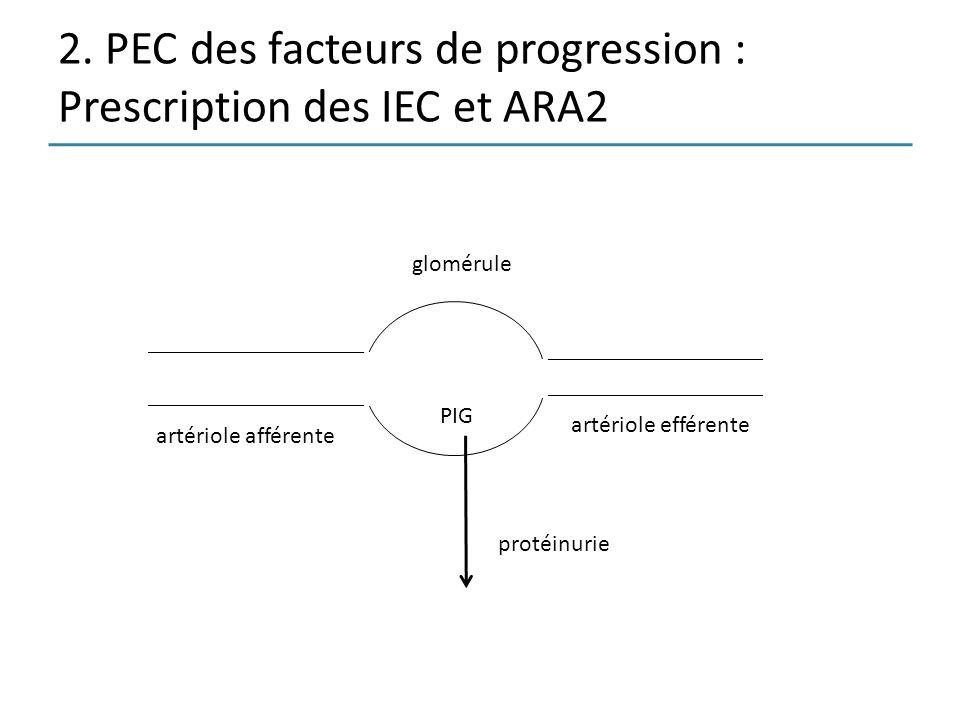 2. PEC des facteurs de progression : Prescription des IEC et ARA2 artériole afférente artériole efférente glomérule protéinurie PIG