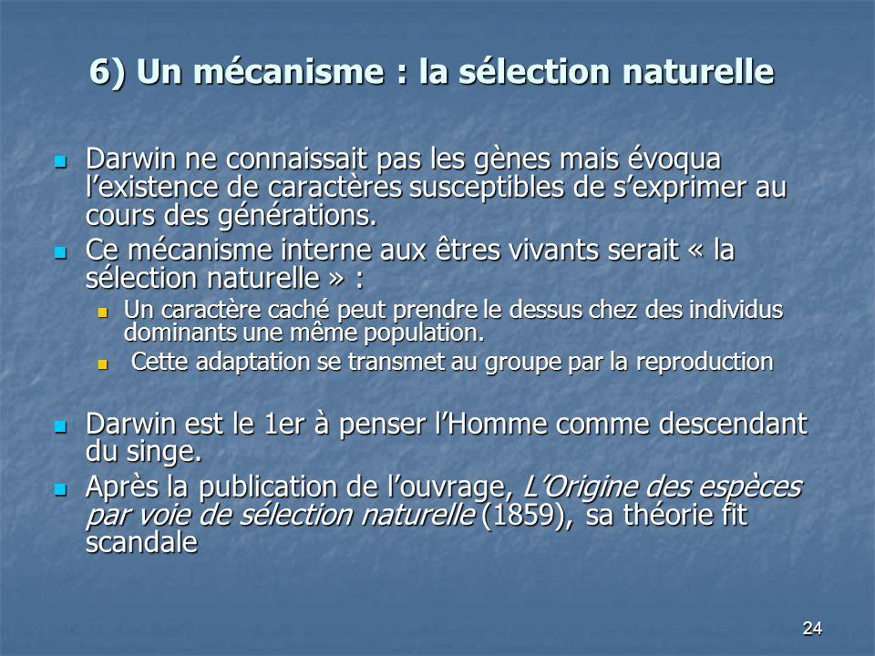 24 6) Un mécanisme : la sélection naturelle Darwin ne connaissait pas les gènes mais évoqua lexistence de caractères susceptibles de sexprimer au cours des générations.