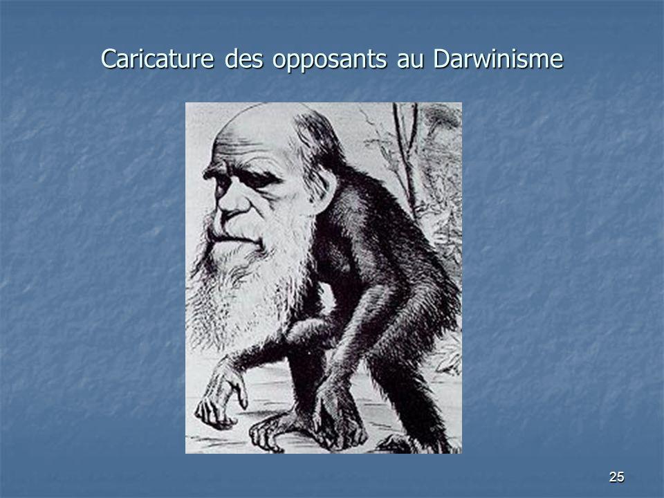 25 Caricature des opposants au Darwinisme