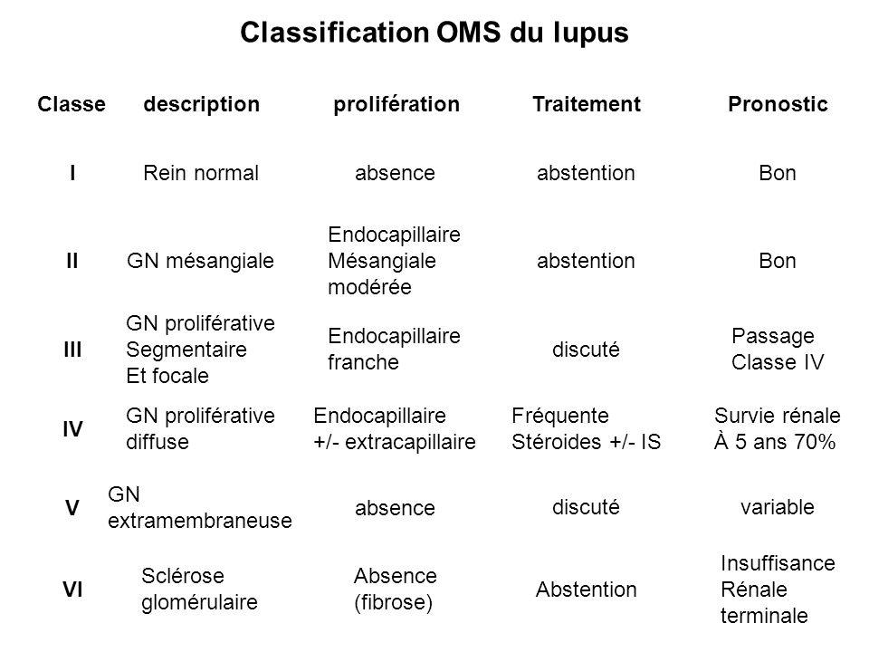 Classification OMS du lupus ClassedescriptionproliférationTraitementPronostic I II III IV V VI Rein normalabsenceabstentionBon GN mésangiale Endocapil