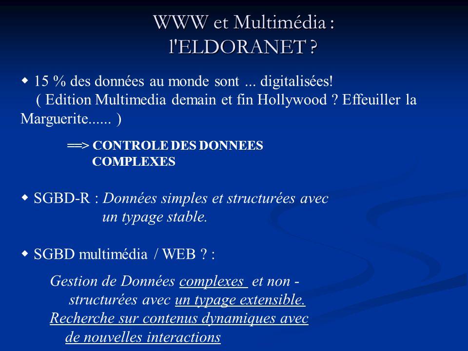 WWW et Multimédia : l ELDORANET . 15 % des données au monde sont...