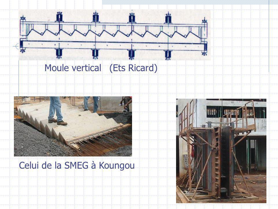 Moule vertical(Ets Ricard) Celui de la SMEG à Koungou