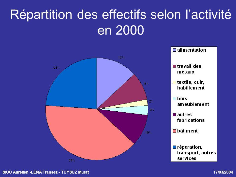 SIOU Aurélien -LENA Fransez - TUYSUZ Murat 17/03/2004 Répartition des effectifs selon lactivité en 2000