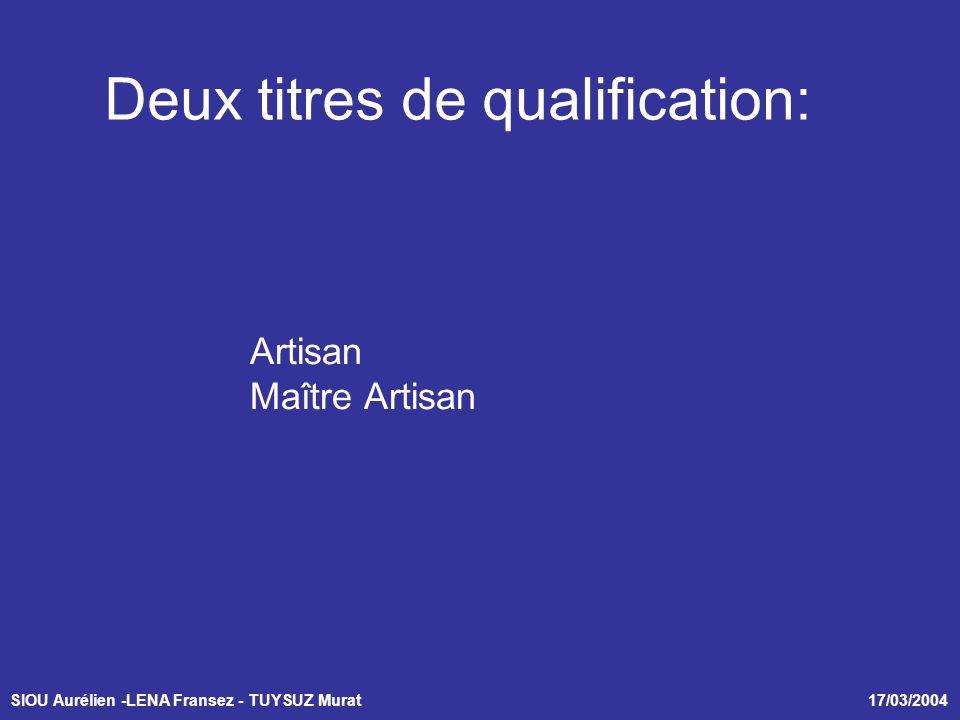 SIOU Aurélien -LENA Fransez - TUYSUZ Murat 17/03/2004 Deux titres de qualification: Artisan Maître Artisan