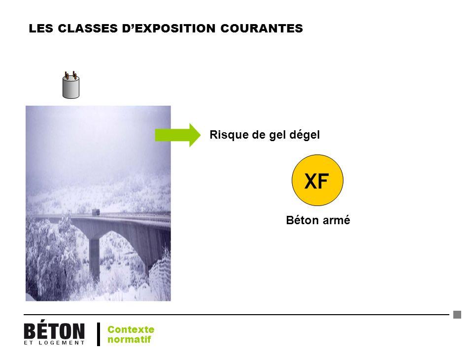 LES CLASSES DEXPOSITION COURANTES XF Béton armé Risque de gel dégel Contexte normatif