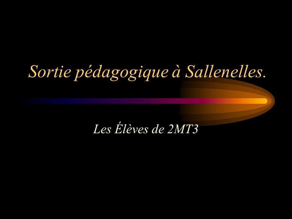Sortie pédagogique à Sallenelles. Les Élèves de 2MT3