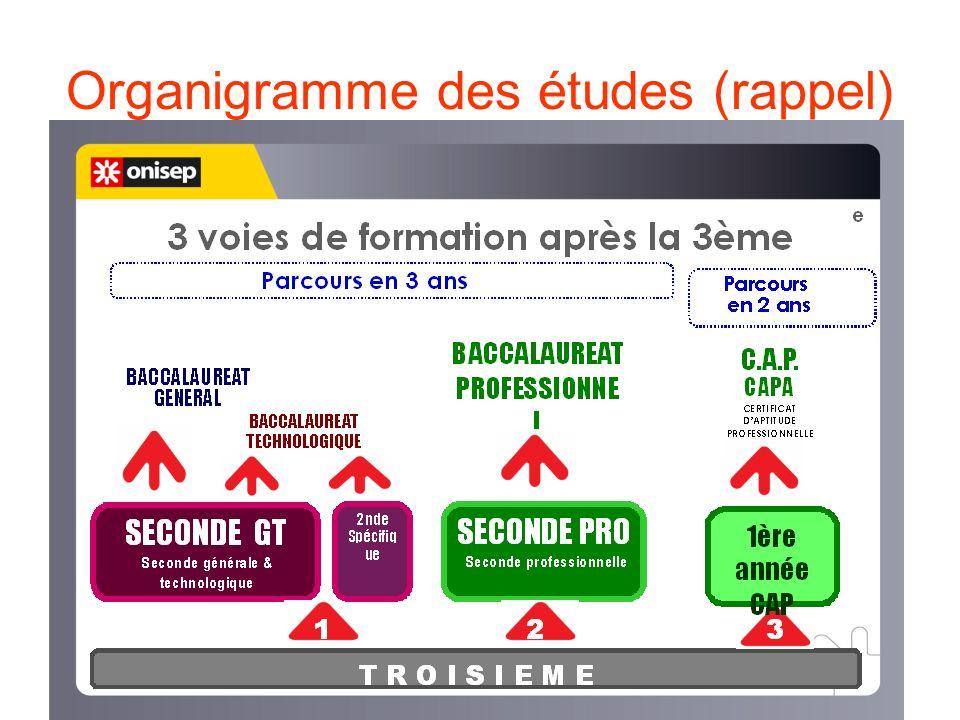 Organigramme des études (rappel)