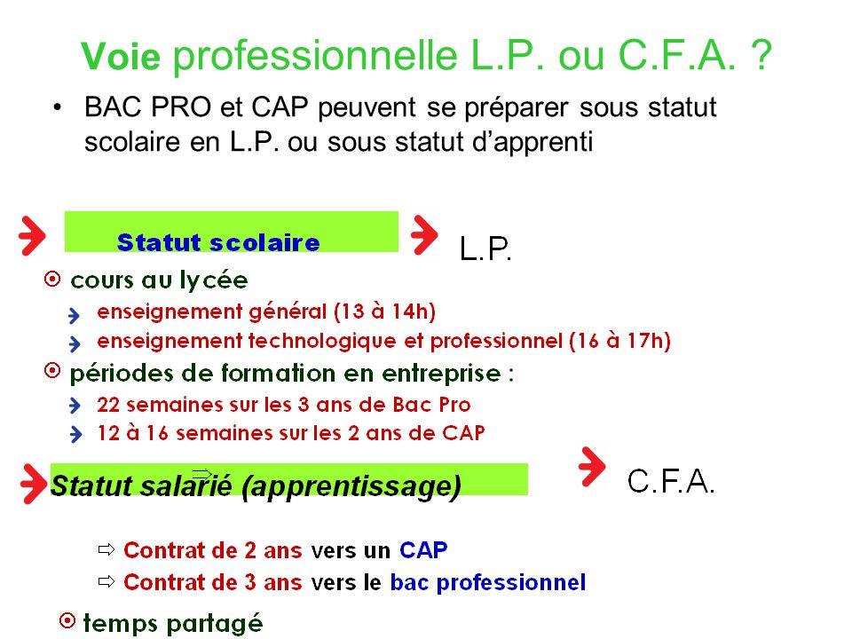 Voie professionnelle L.P.ou C.F.A. BAC PRO et CAP peuvent se préparer sous statut scolaire en L.P.