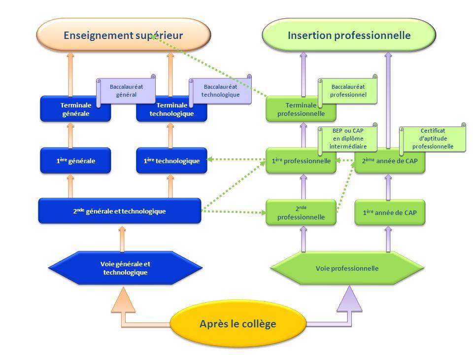 Les baccalauréats technologiques CGRHMERCFEGSI Sciences et Technologies de la Gestion