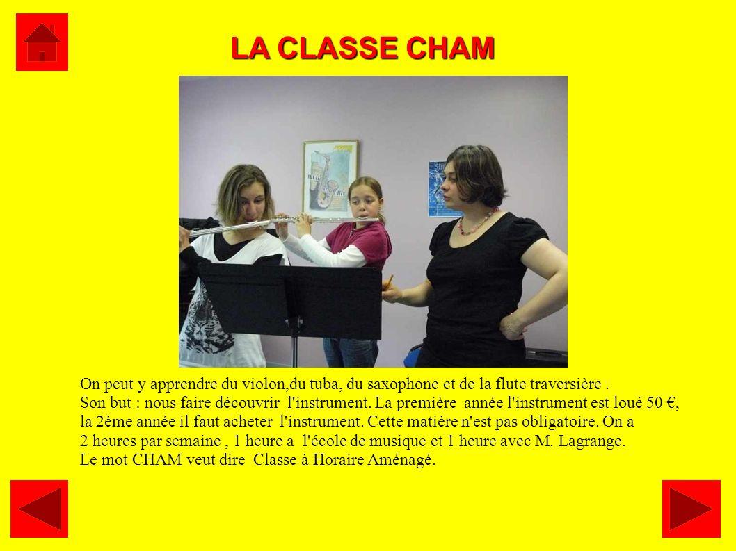 LA CLASSE CHAM On peut y apprendre du violon,du tuba, du saxophone et de la flute traversière. Son but : nous faire découvrir l'instrument. La premièr