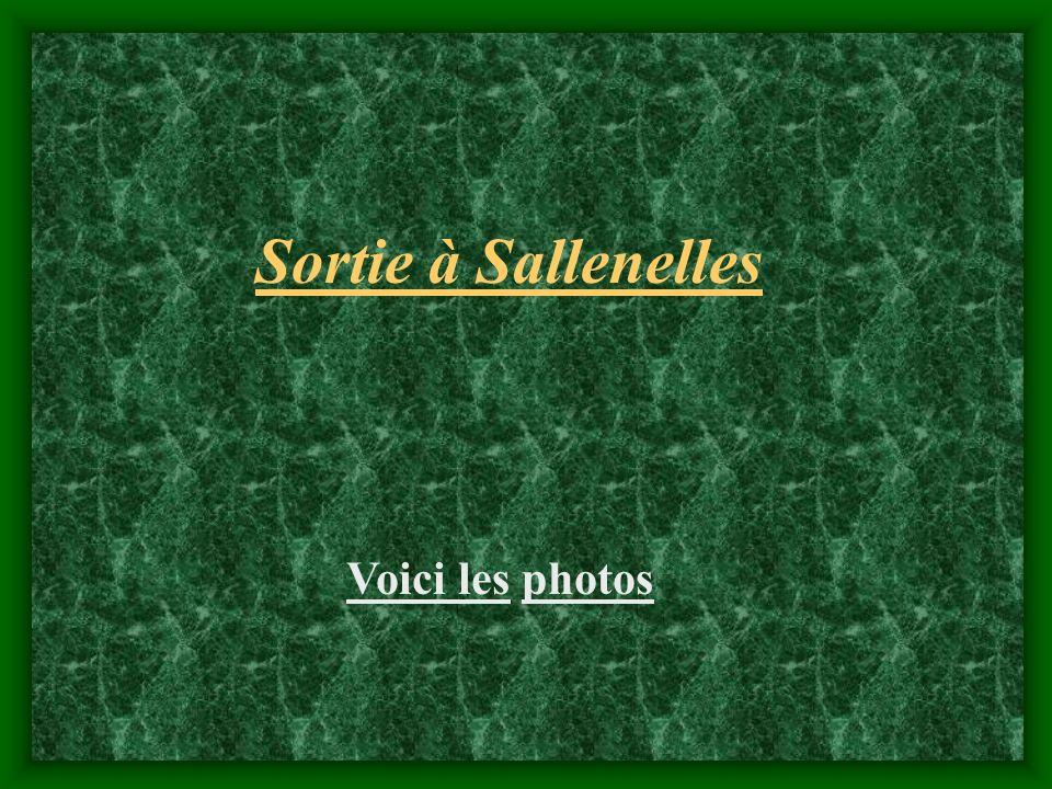 Sortie à Sallenelles Voici les photos