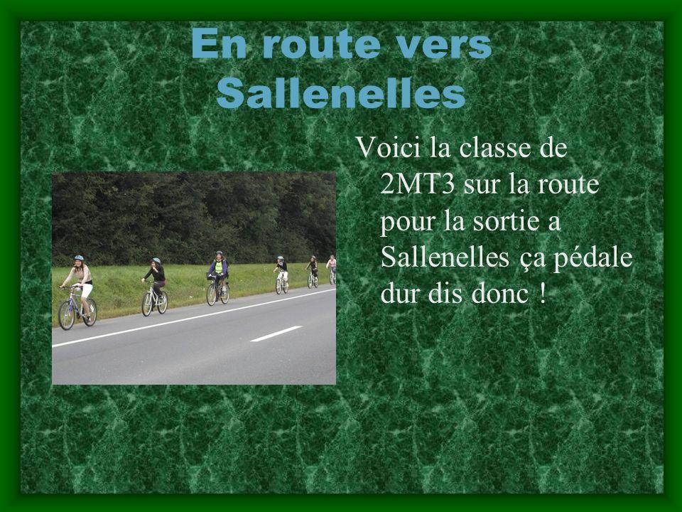 En route vers Sallenelles Voici la classe de 2MT3 sur la route pour la sortie a Sallenelles ça pédale dur dis donc !