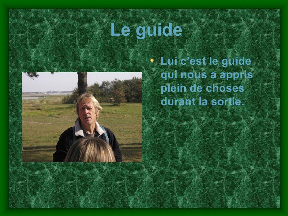 Le guide Lui cest le guide qui nous a appris plein de choses durant la sortie.
