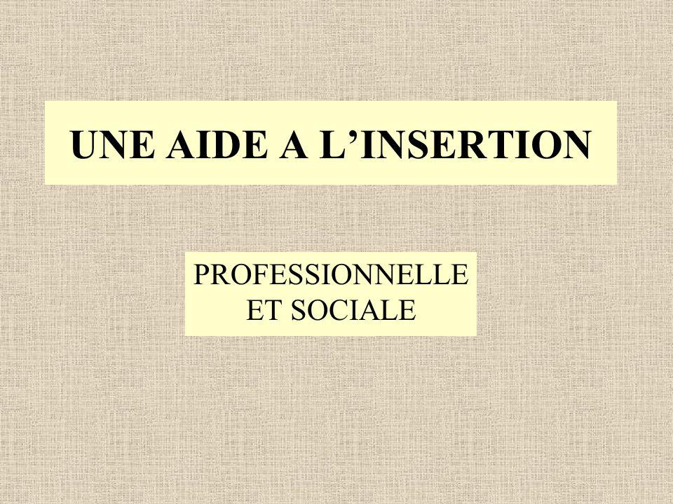 UNE AIDE A LINSERTION PROFESSIONNELLE ET SOCIALE