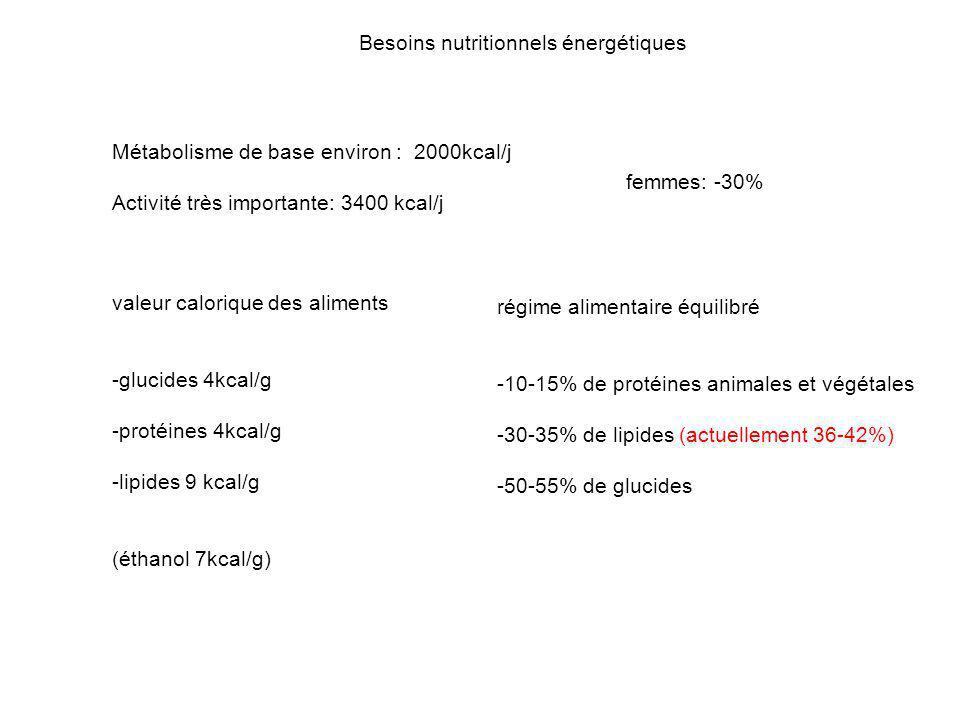 Besoins nutritionnels énergétiques Métabolisme de base environ : 2000kcal/j Activité très importante: 3400 kcal/j femmes: -30% valeur calorique des al