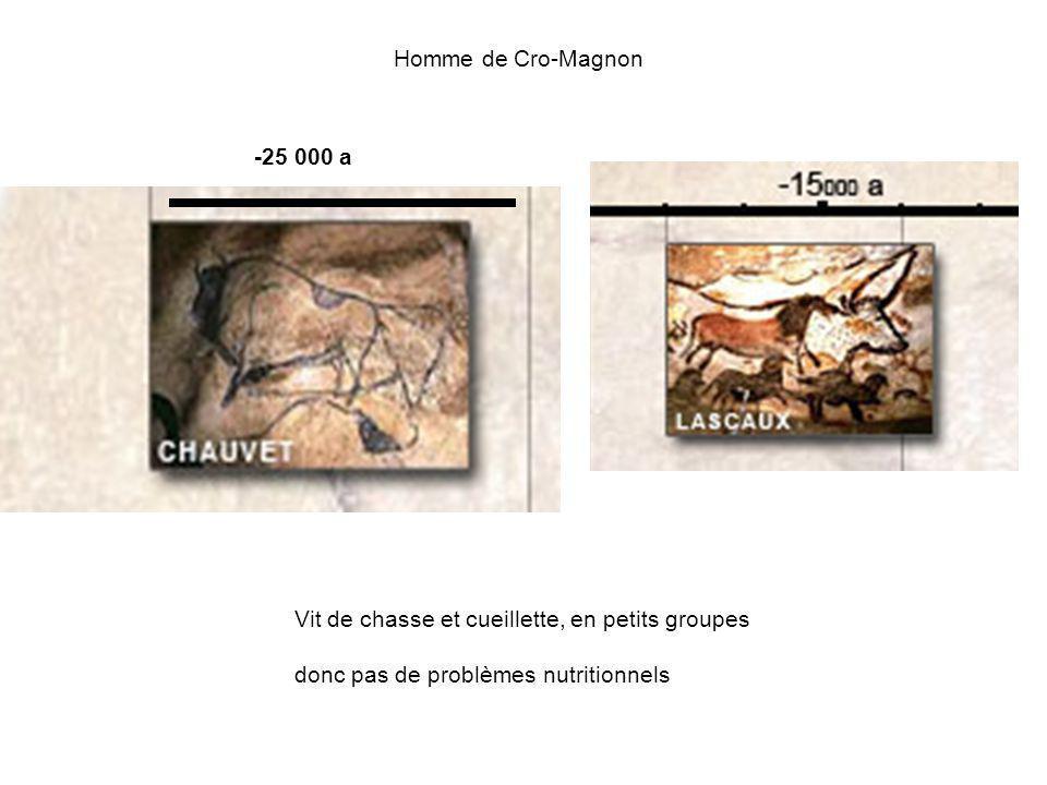 Homme de Cro-Magnon Vit de chasse et cueillette, en petits groupes donc pas de problèmes nutritionnels -25 000 a