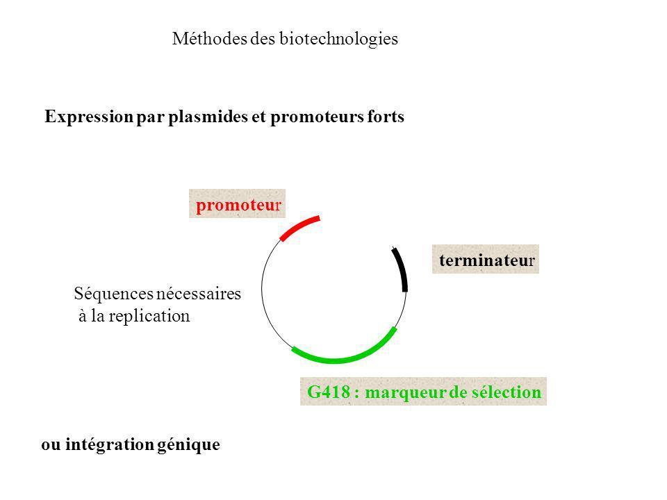 Méthodes des biotechnologies Expression par plasmides et promoteurs forts G418 : marqueur de sélection promoteur cDNA terminateur Séquences nécessaire