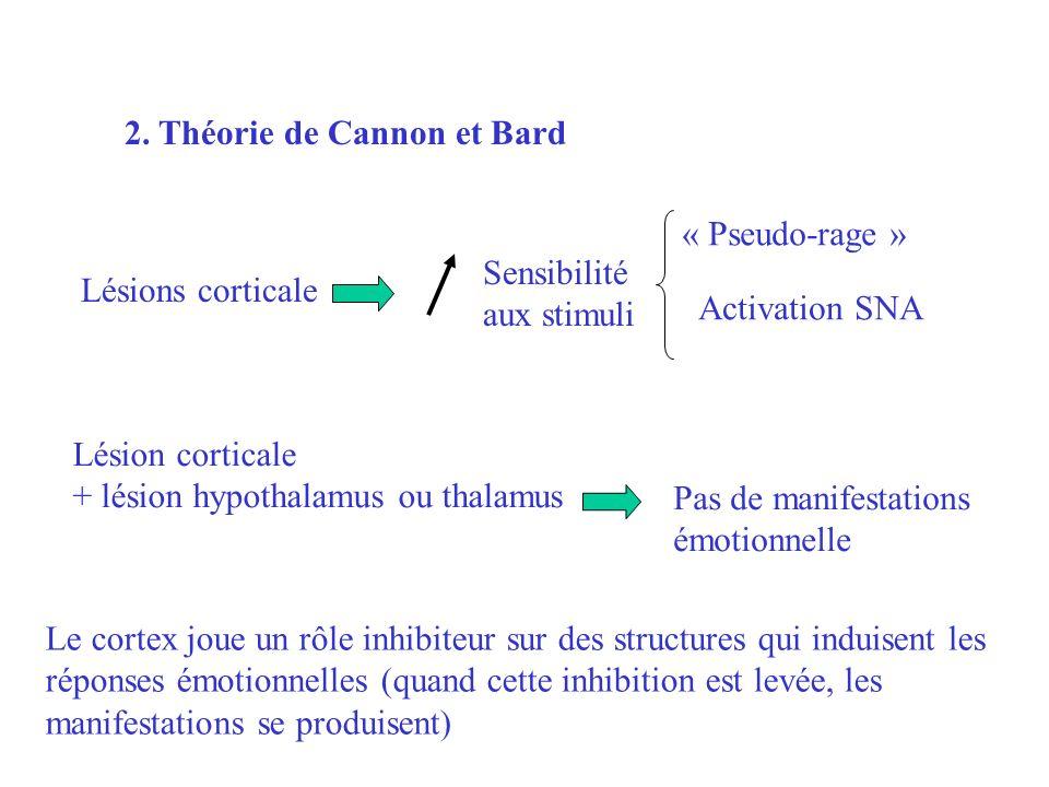 2. Théorie de Cannon et Bard Lésions corticale Sensibilité aux stimuli « Pseudo-rage » Activation SNA Lésion corticale + lésion hypothalamus ou thalam