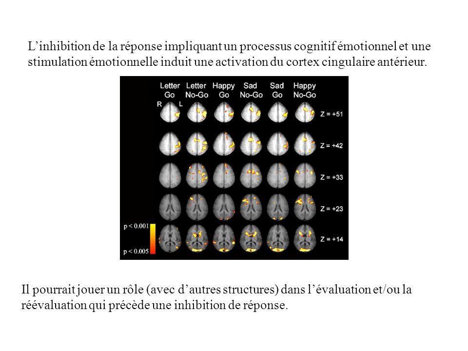 Linhibition de la réponse impliquant un processus cognitif émotionnel et une stimulation émotionnelle induit une activation du cortex cingulaire antér