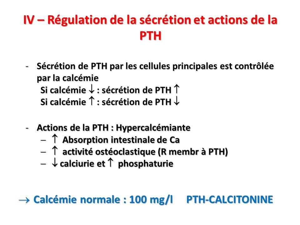 IV – Régulation de la sécrétion et actions de la PTH -Sécrétion de PTH par les cellules principales est contrôlée par la calcémie Si calcémie : sécrétion de PTH Si calcémie : sécrétion de PTH -Actions de la PTH : Hypercalcémiante Absorption intestinale de Ca Absorption intestinale de Ca activité ostéoclastique (R membr à PTH) activité ostéoclastique (R membr à PTH) calciurie et phosphaturie calciurie et phosphaturie Calcémie normale : 100 mg/l PTH-CALCITONINE Calcémie normale : 100 mg/l PTH-CALCITONINE