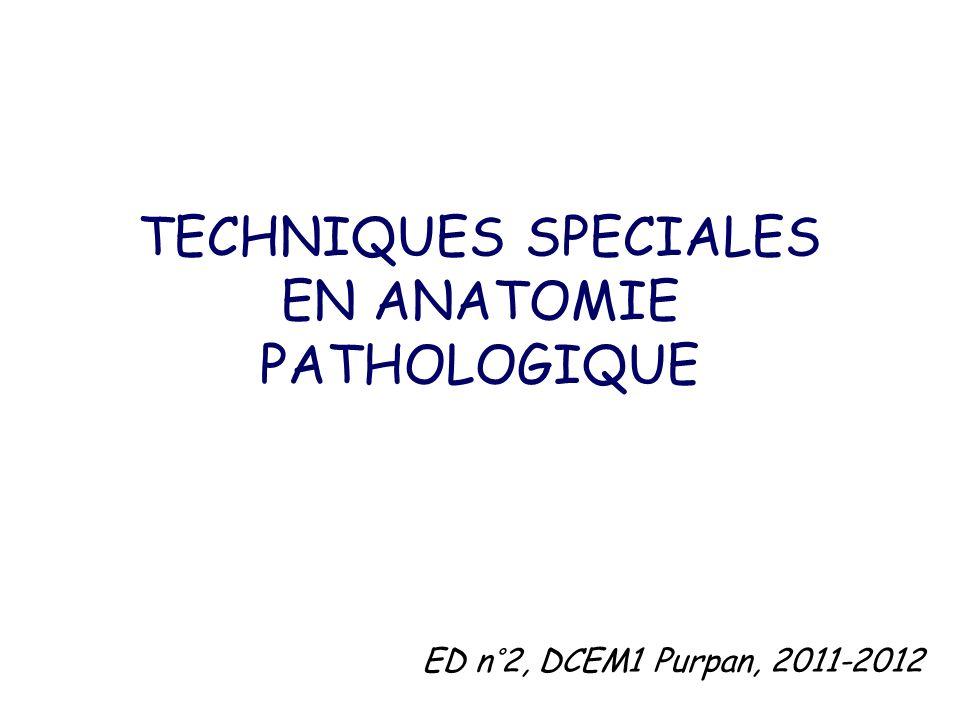 TECHNIQUES SPECIALES EN ANATOMIE PATHOLOGIQUE ED n°2, DCEM1 Purpan, 2011-2012