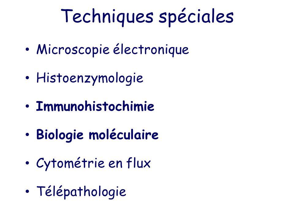 Techniques spéciales Microscopie électronique Histoenzymologie Immunohistochimie Biologie moléculaire Cytométrie en flux Télépathologie
