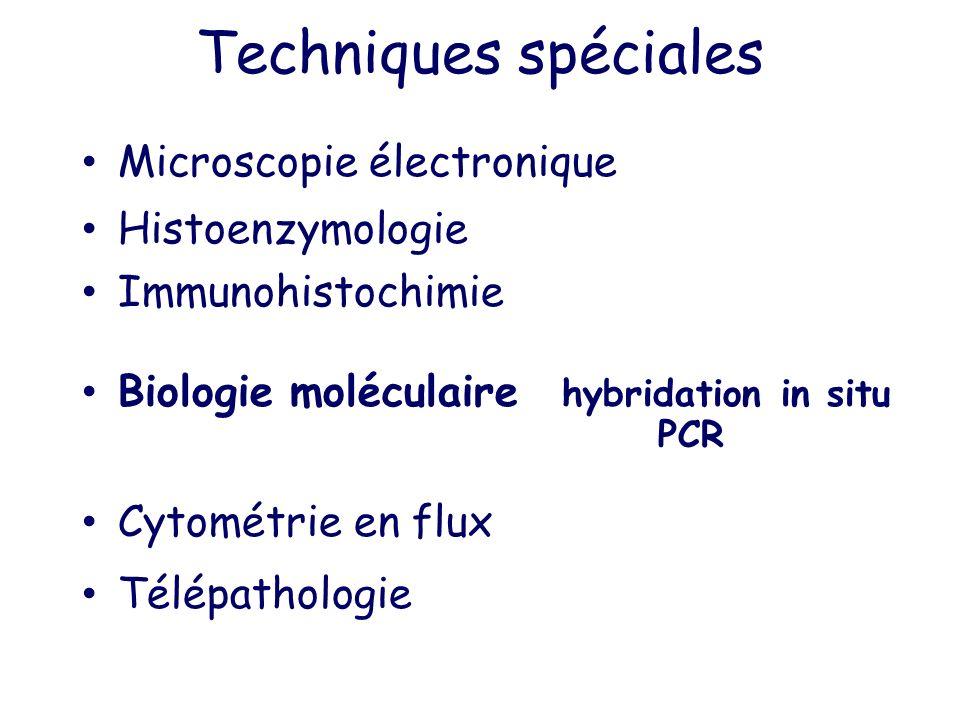 Techniques spéciales Microscopie électronique Histoenzymologie Immunohistochimie Biologie moléculaire hybridation in situ PCR Cytométrie en flux Télép