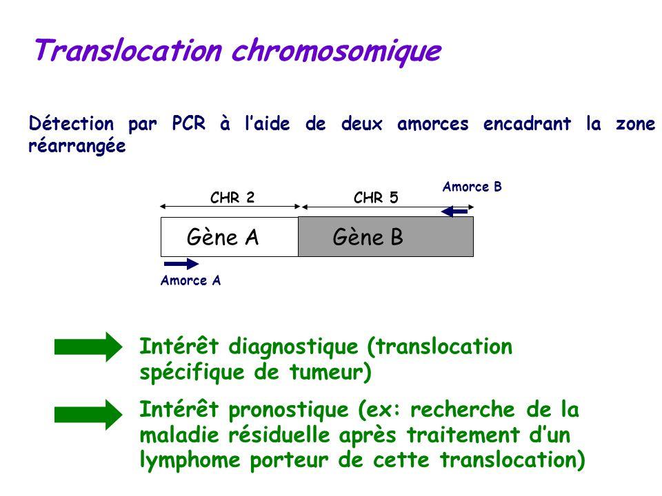 Translocation chromosomique Détection par PCR à laide de deux amorces encadrant la zone réarrangée CHR 2CHR 5 Amorce A Amorce B Gène AGène B Intérêt d